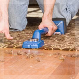 Carpet Repair and Installation
