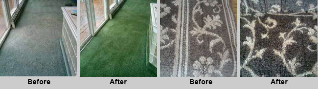 Carpet & Spot Dyeing Services