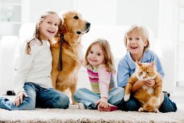 Pet Treatment West Chester PA