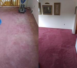 Carpet-Dyeing-1